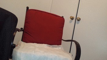 Poop On Red Chair