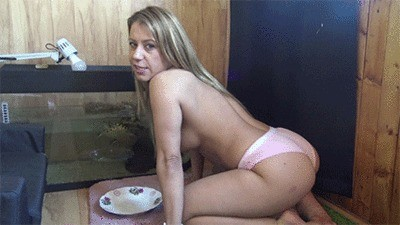 Your Meal Is Served