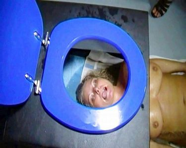 Extreme And Perverted Toilet Seat Excesses
