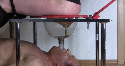 Scat Feeding Slave Reinhard