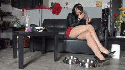 Mistress Gaia – Bowls Of Goodies
